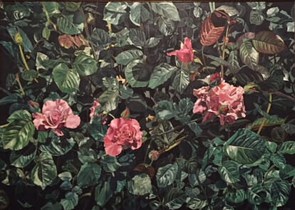 "Pink Roses 25.5""x 36""  © Sharon Craven Kinzer"